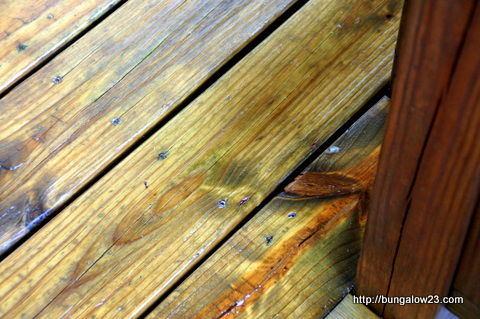 mildew removed from deck