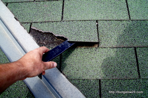 Removing damaged shingle