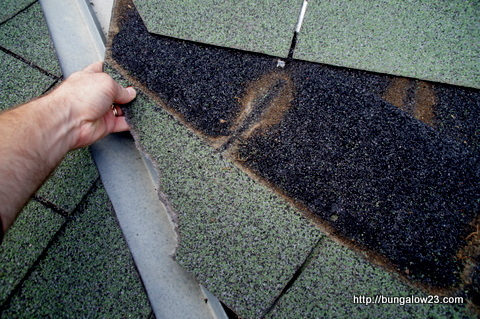 damaged shingle comes out