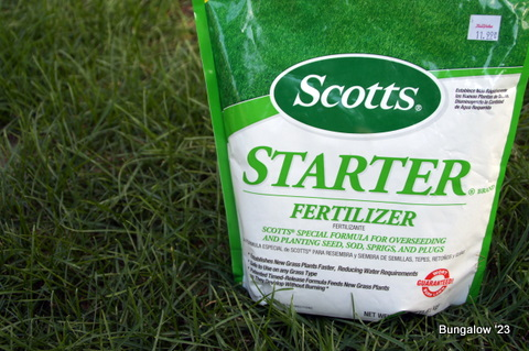 fertilizer for grass seed