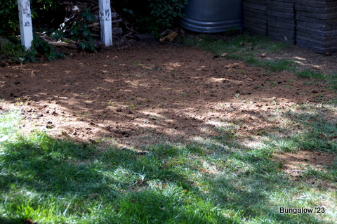 patio area seeded with peat moss
